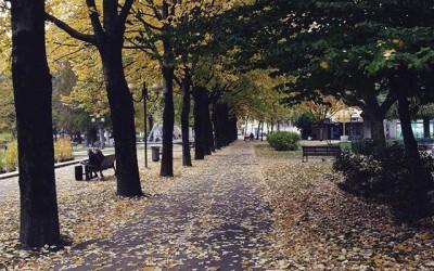 Plus belle vidéo d'automne à Chambéry !
