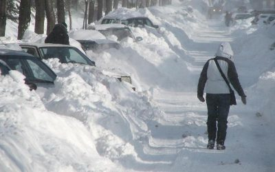 Températures polaires prévues pour l'hiver 2019-2020
